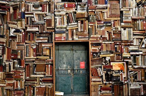 Article : Vingt-troisième édition de Livres en Folie, plus grande foire du livre en Haïti